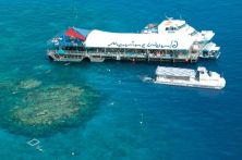 Australien/CNS/Reef Magic Cruises/marine world platform